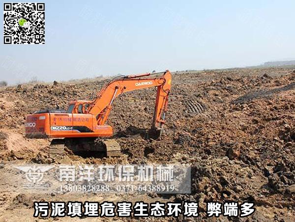 污泥填埋危害生态环境